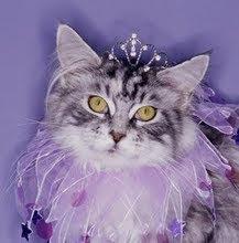 la gata coqueta un blog lleno de amistad pra dar