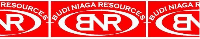 BUDI NIAGA RESOURCES
