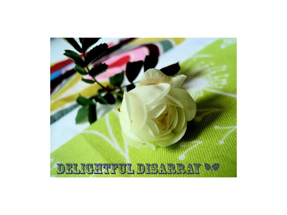 delightful disarray ☁