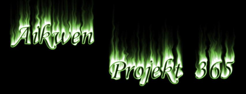 Aikwen projekt 365