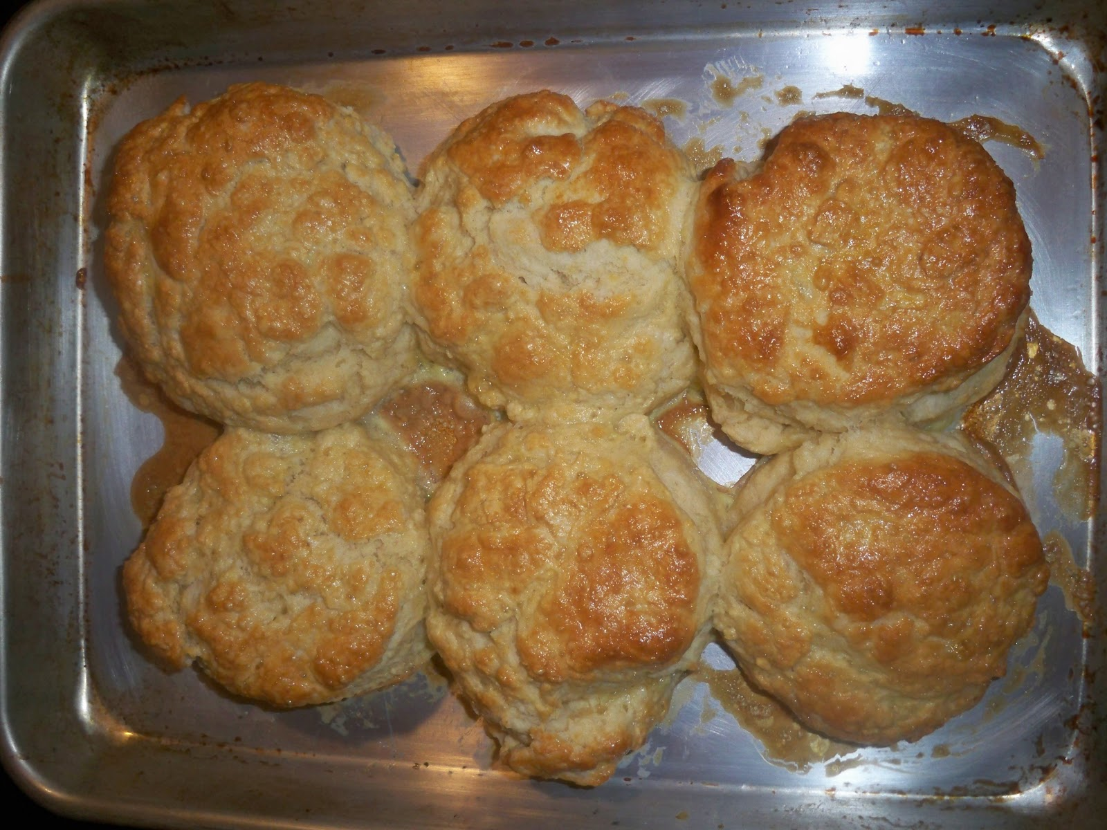 ann loves food: biscuit-y goodness