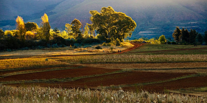 Farmland at sunset, Malealea, Lesotho © Matt Prater