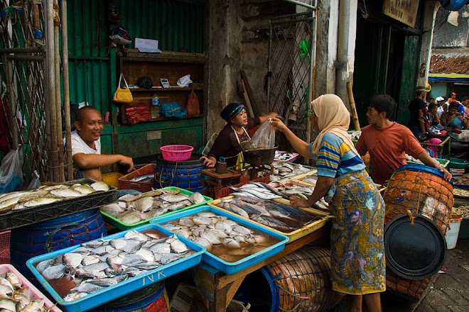 Chinatown fish market in Surabaya, Java, Indonesia © Matt Prater