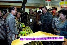 Kunjungan Presiden SBY, Ibu Ani SBY, dan Jajaran Menteri Indonesia Bersatu