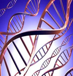 importancia biologia ciencia medica: