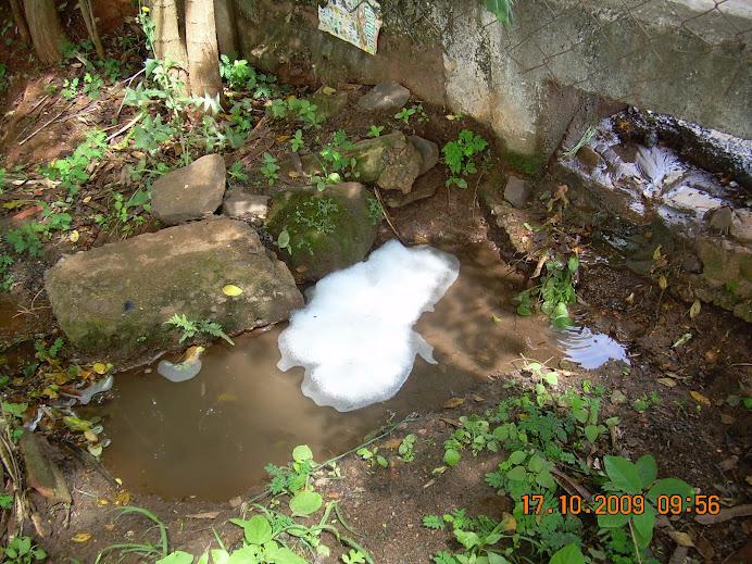 Córrego Liso - Pesquisa de campo