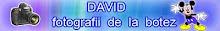 Botez  David