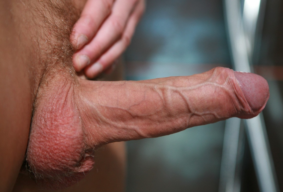 Hard veiny cock