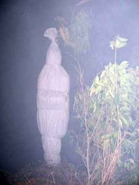 Pepes Pocong
