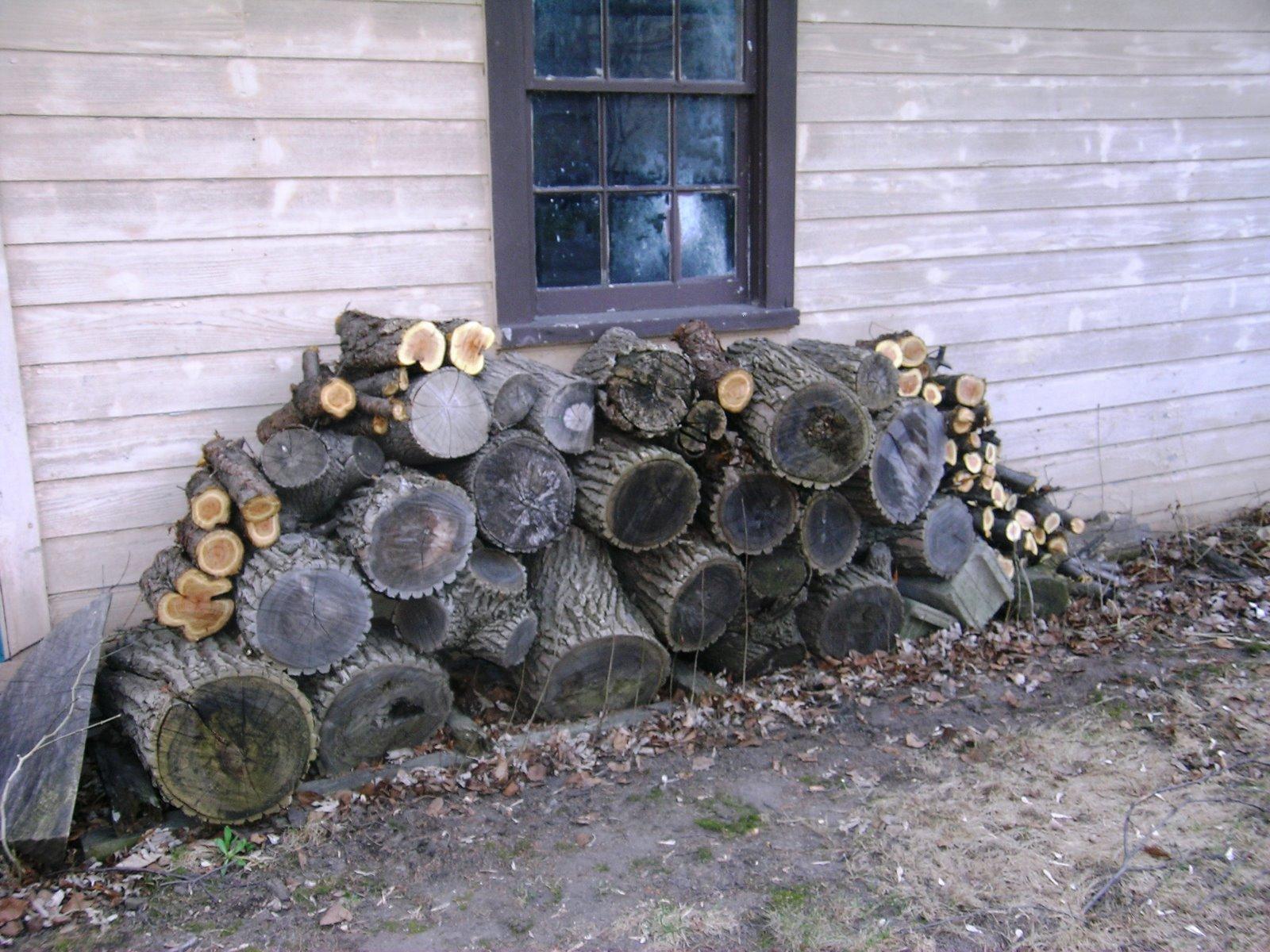 [firewood+&+tree+remains.JPG]