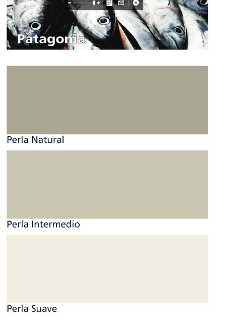T preguntas gris perla intermedio coleci n patagonia for Pintura gris perla bruguer