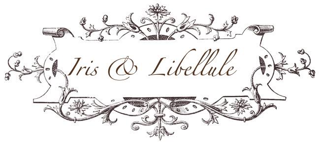 Iris & Libellule