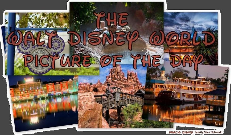 walt disney world castle at night. The Walt Disney World Picture