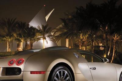Bugatti Veron Car 7