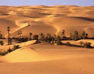 Perusahaan Keamanan Barat Mulai Mencari Harta Gaddafi di Gurun Libya