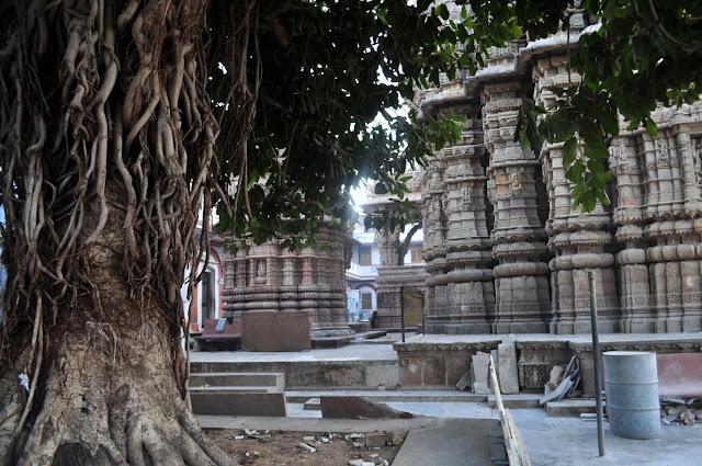 vadnagar narendra modi gujarat morning hathkeshwar temple banyan tree