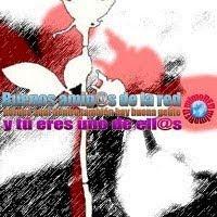 """PREMIO """"AMIGOS DE LA RED"""""""