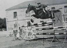 Martinez de Albornoz