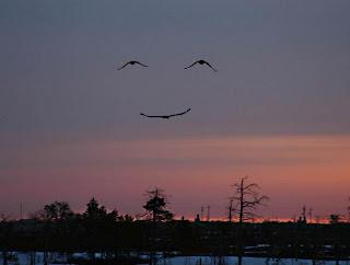 Een glimlach uit de hemel �