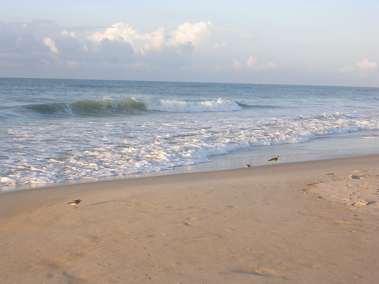 North Carolina Beaches Best Beaches in North Carolina Uptake
