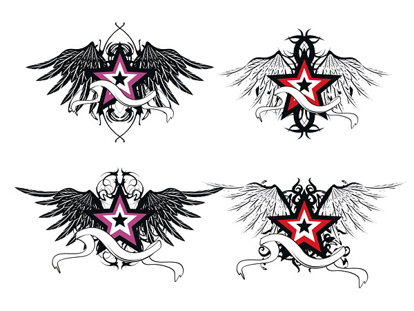 design solutions  star wings material vector