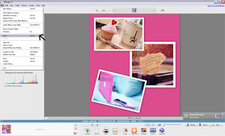 Picasa Tutorial - Collage