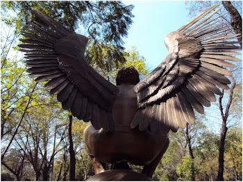 Foto de campeonato angelical