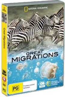 Grandes Migrações: Alimentar-se ou Morrer  TVRip XviD Dublado ntg1014