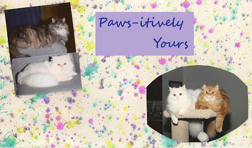 Paws-itively Yours