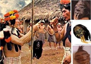 Jibaros: los reductores de cabezas