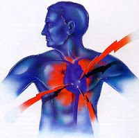 Penyakit jantung yakni penyakit yang sangat mengerikan Obat Penyakit Jantung