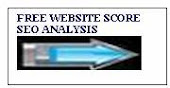 Whats your website score?