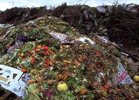 la-fao-veut-mettre-fin-aux-gaspillages-alimentaires
