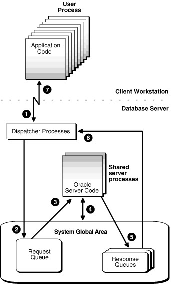 how to connect to oracle database using sqlplus in unix