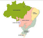 O Mapa dos biomas brasileiros