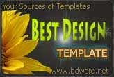 Best Design Template and Layout
