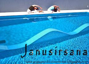 JANUSIRSASANA