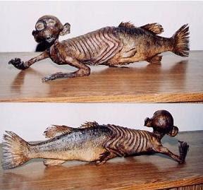 fijimermaid Legenda Mermaid dan Merman dari masa ke masa