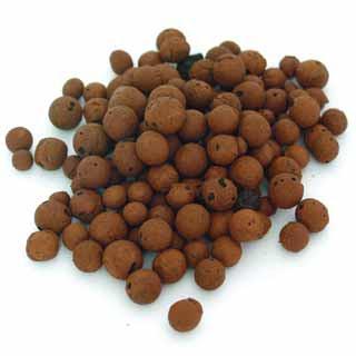 arlita%5B1%5D Acuaponia: Acuicultura + Hidroponía