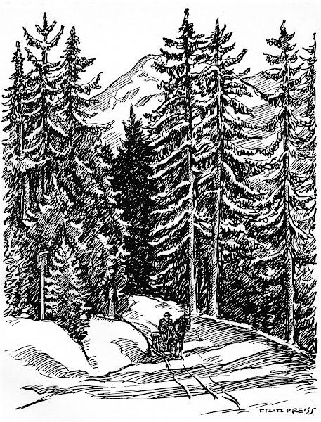Wintertag in den Bergen
