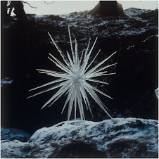 Fused Icicles by: Andy Goldsworthy