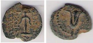 מטבע חשמונאי-סלבקי סמל שושן