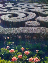 "Maze Garden in France ""Epcot"""