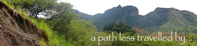 a path less travelled by...