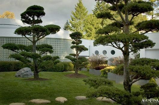 Home Decorating Ideas: Contemporary Fress Garden Design : fress ...