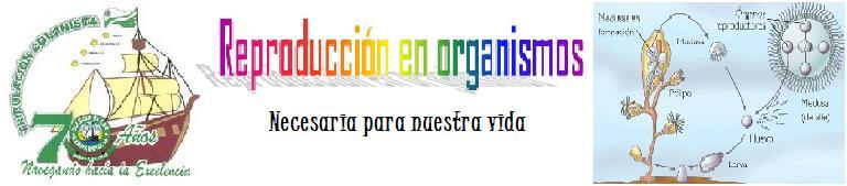 REPRODUCCIÓN EN ORGANISMOS
