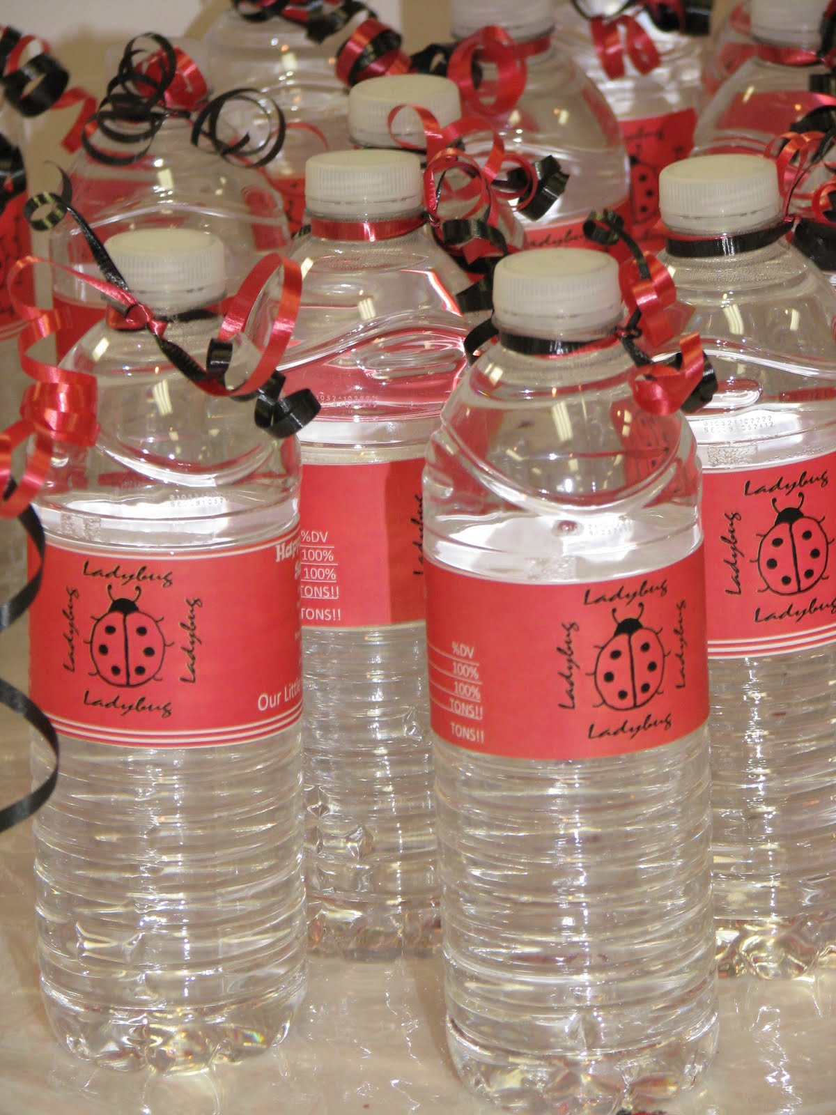 Lady bug birthday party decorations big bear 39 s wife for Decor water bottle