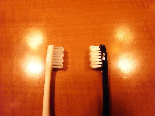 小白 和 小黑。