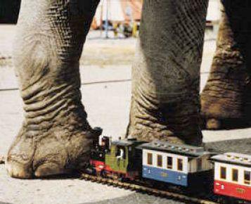 Lgb Trains Lgb Trains