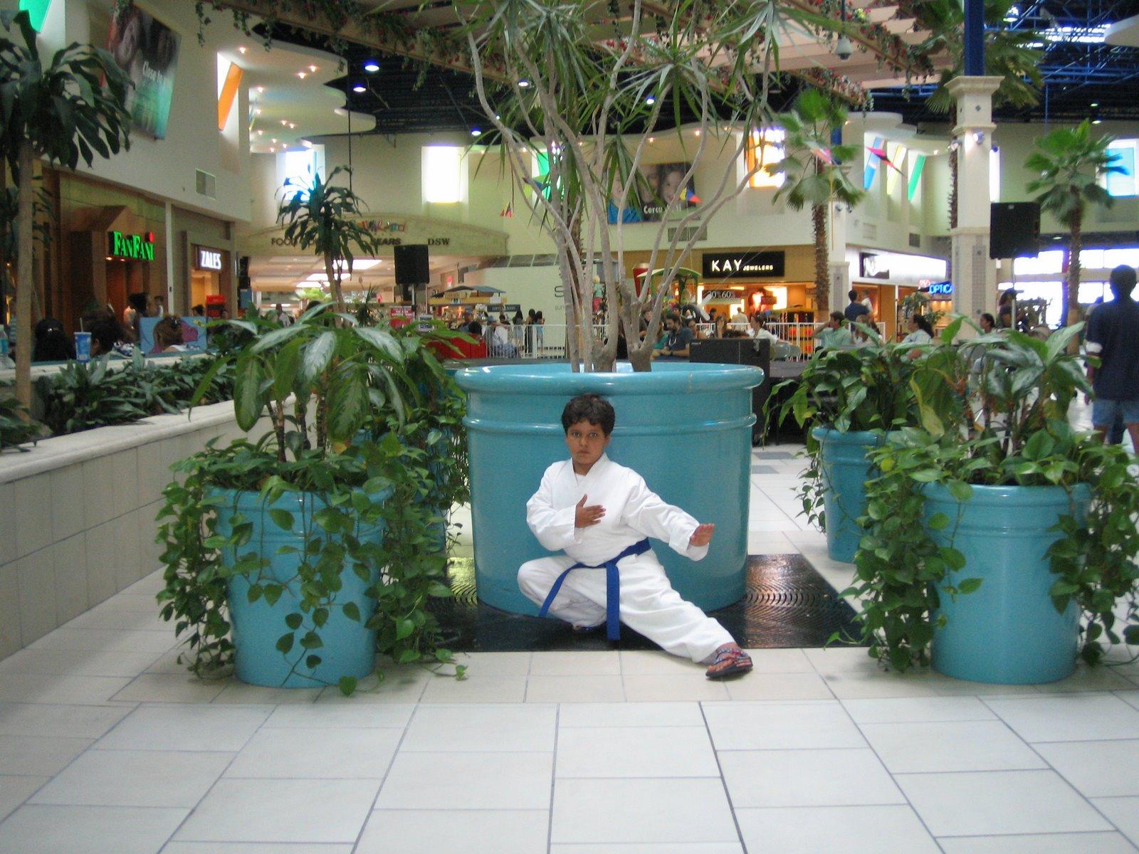 [karate+&+Estrella]